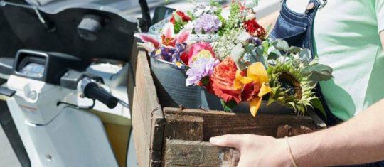 Livraison de fleurs en France